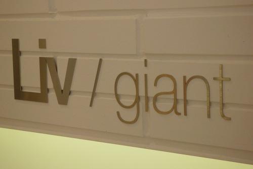 100708_giant_010