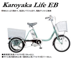 090530_karoyaka